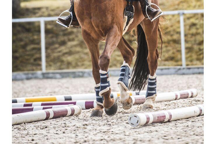 Pferd mit Reiter, das auf einem Außenplatz über Stangen geht