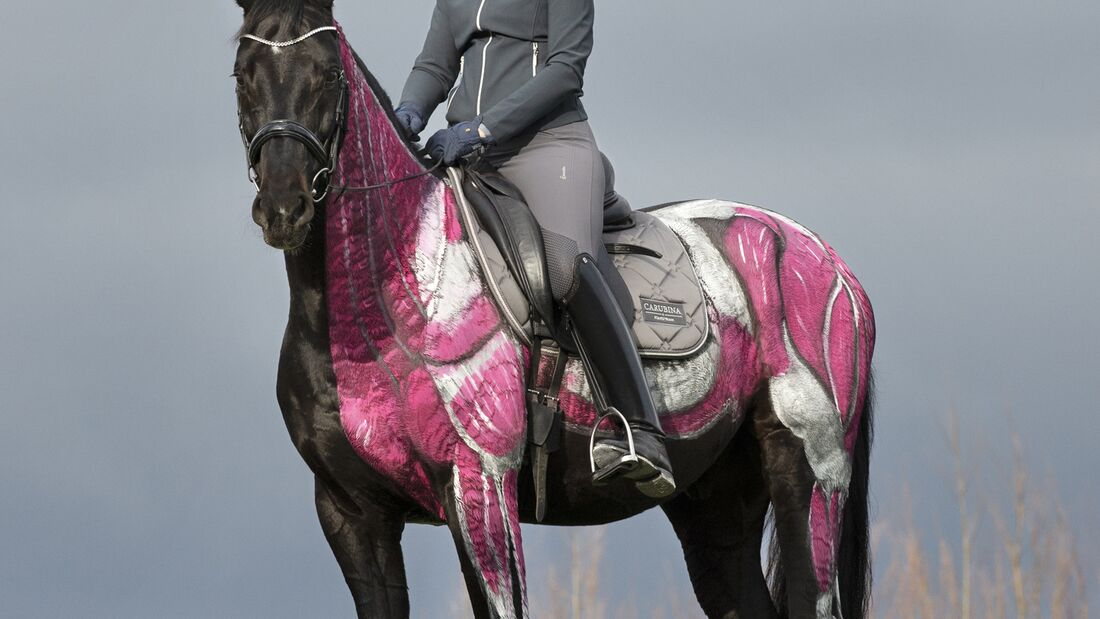 Pferd mit aufgemalten Muskeln