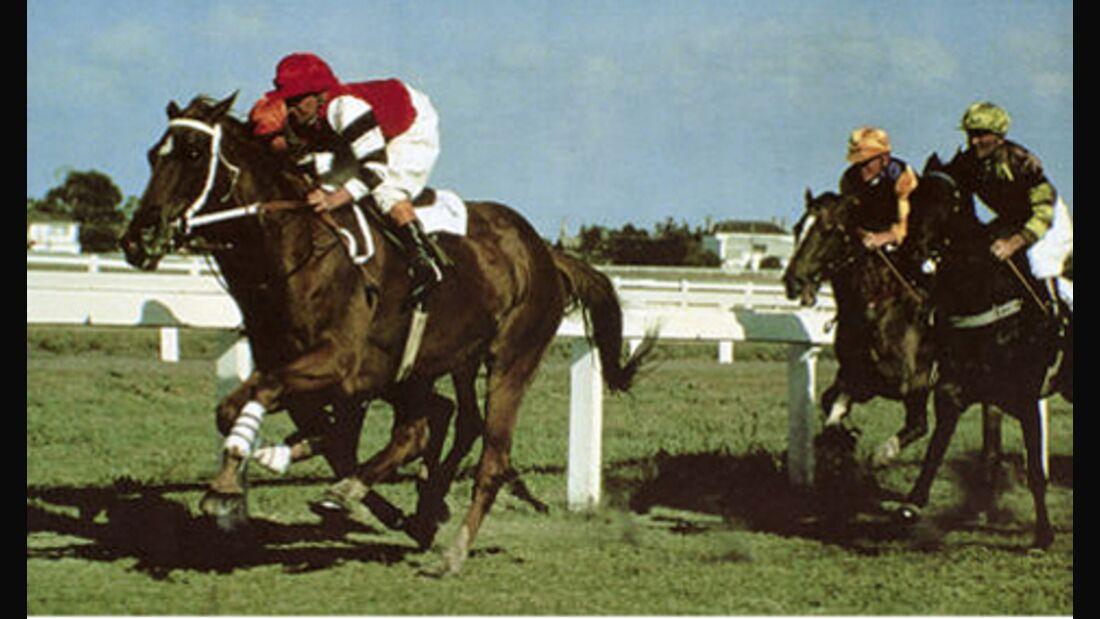 Phar Lap – Das beste Rennpferd der Welt