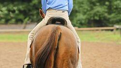 Schiefer Reiter auf einem Pferd von hinten