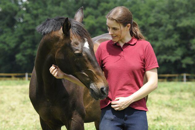 Pferd von genommen wird frau Hauspferd