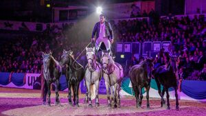 TOP GALA Show Faszination Pferd The Flying Frenchman Lorenzo