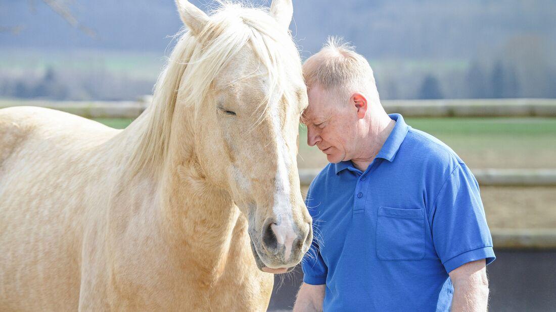 Wen Pferde wollen
