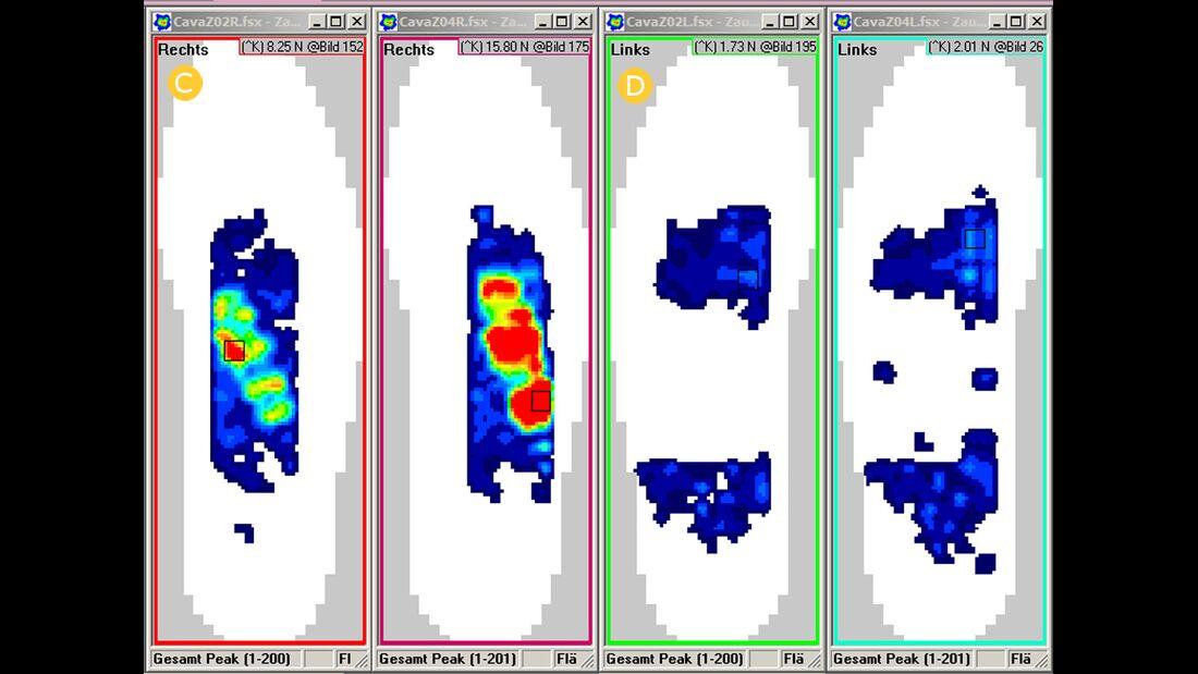 cav-201701-drucktest-gebisslos-blumen-zaum-m3-bis-m8-savecomp-megascan-gmbh (jpg)