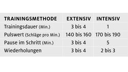 cav-201808-fit-mit-power-pause-trainingsmethode (jpg)