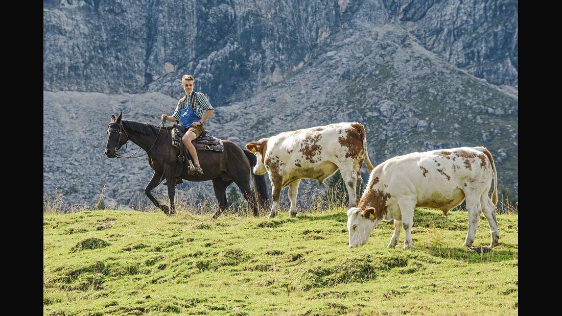 cav-201810-cowboy-lir9800--mit-TEASER-v-amendo (jpg)
