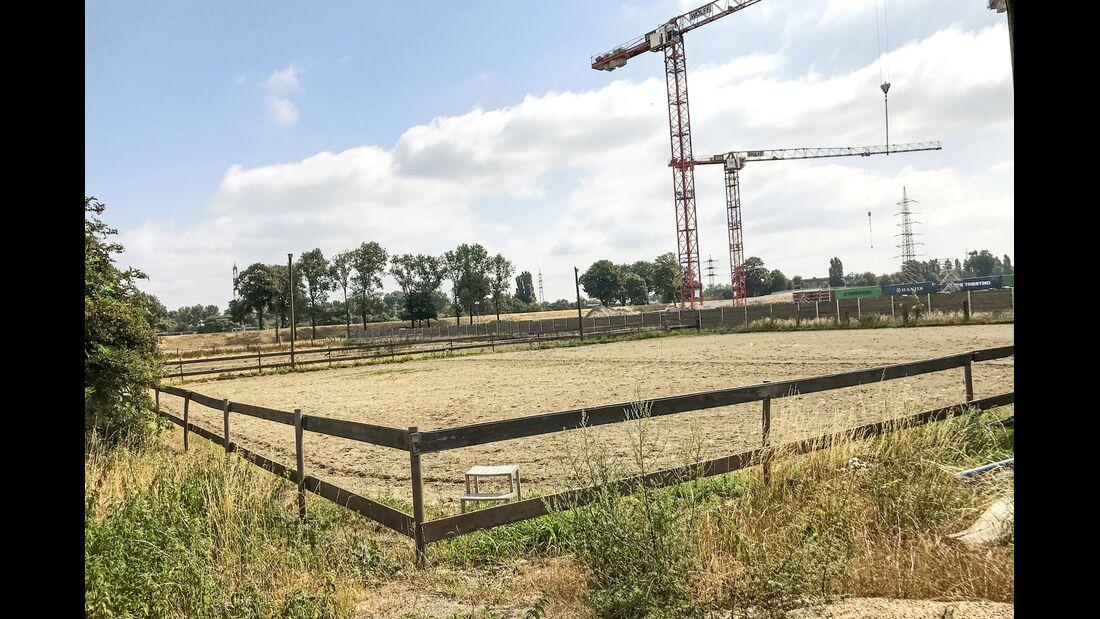 cav-201810-reitschultest-oberhausen-klaphecks-hof-reitplatz-img2119 (jpg)