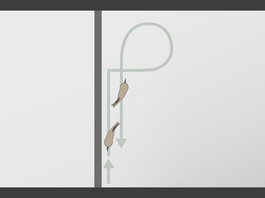 cav-201810-reitweisen-mixen-grafik-ziel-4-volte