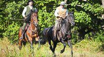 cav-201812-pferderassen-20180912-maremma-pferde-0137-hartig-v-amendo (jpg)