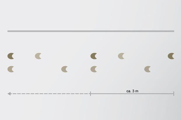 cav-201901-freispringen-seite-56-schuschkleb (jpg)
