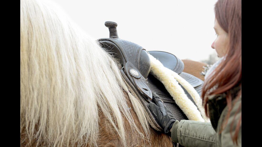 cav-201903-cavallo-coach-8-lir2567-v-amendo (jpg)