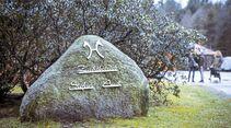 cav-201903-pferdezucht-stefan-aust-armstorf-1318a-joern-lehmann-v-amendo (jpg)