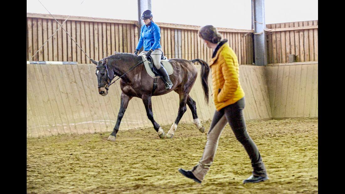 cav-201905-cavallo-coach-20-lir6330-v-amendo (jpg)