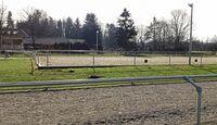 cav-201905-reitschultest-hesta-kykki-20190223-125252-ovalbahn-reitplatz-v-amendo (jpg)