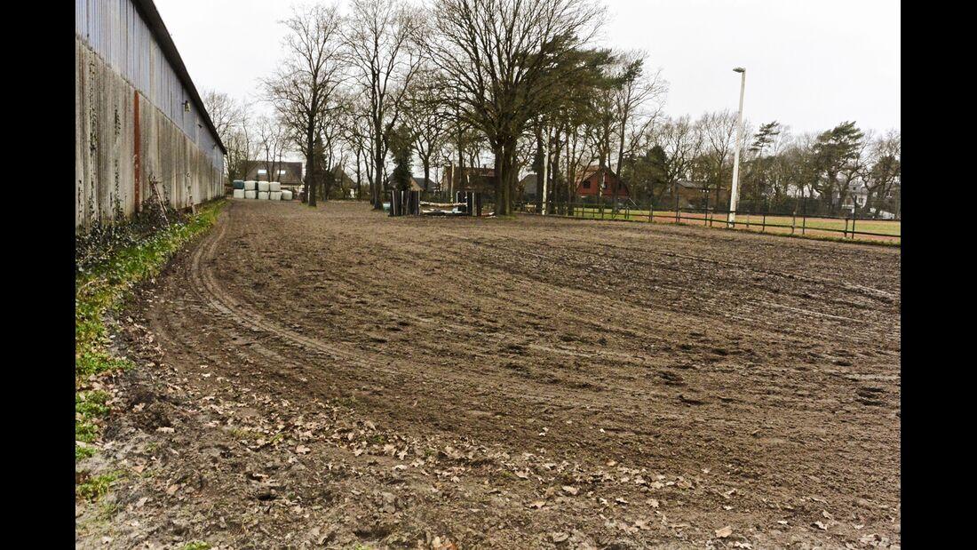cav-201905-reitschultest-reit- und-fahrschule-oldenburg-dsc-5453-reitplatz-v-amendo (jpg)