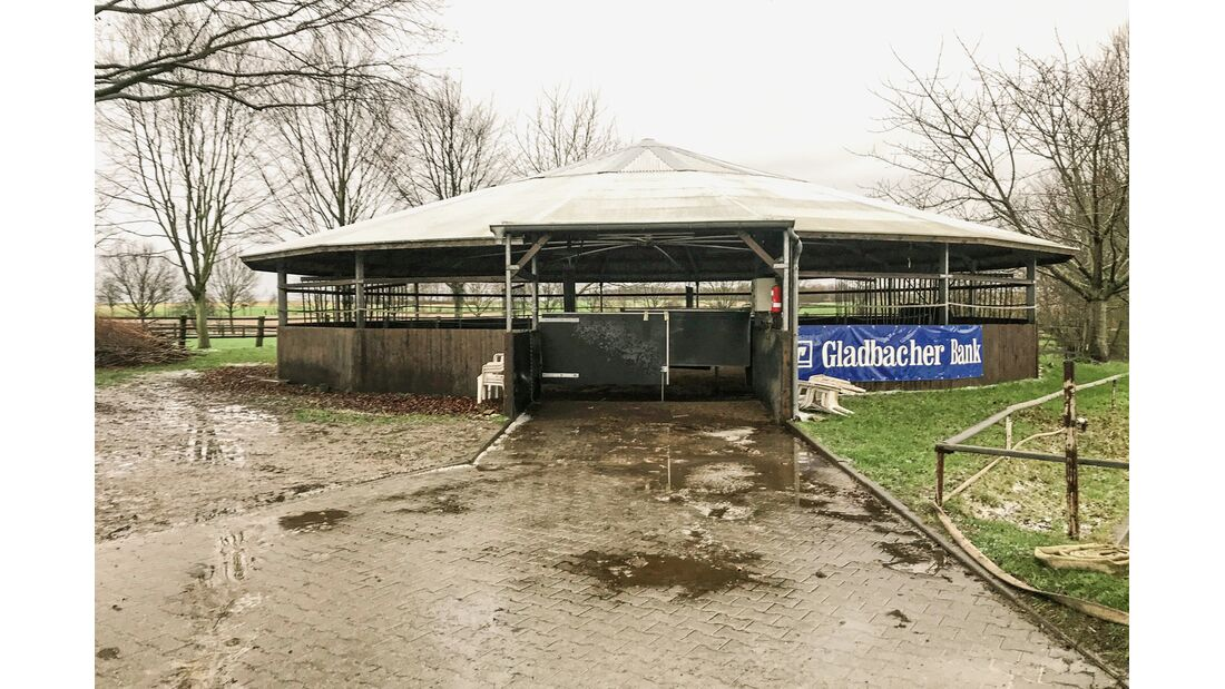 cav-201906-reitschultest-pferdehof-schnitzer-fuehranlage-img3192-v-amendo (jpg)