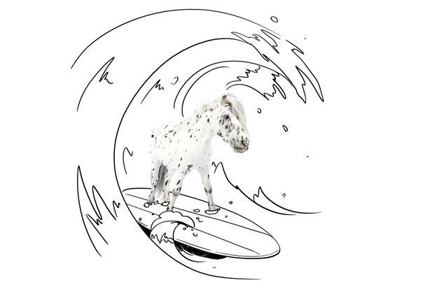cav-lancelot-small-urlaub-lir3847-surfen-auf-surfbrett (jpg)