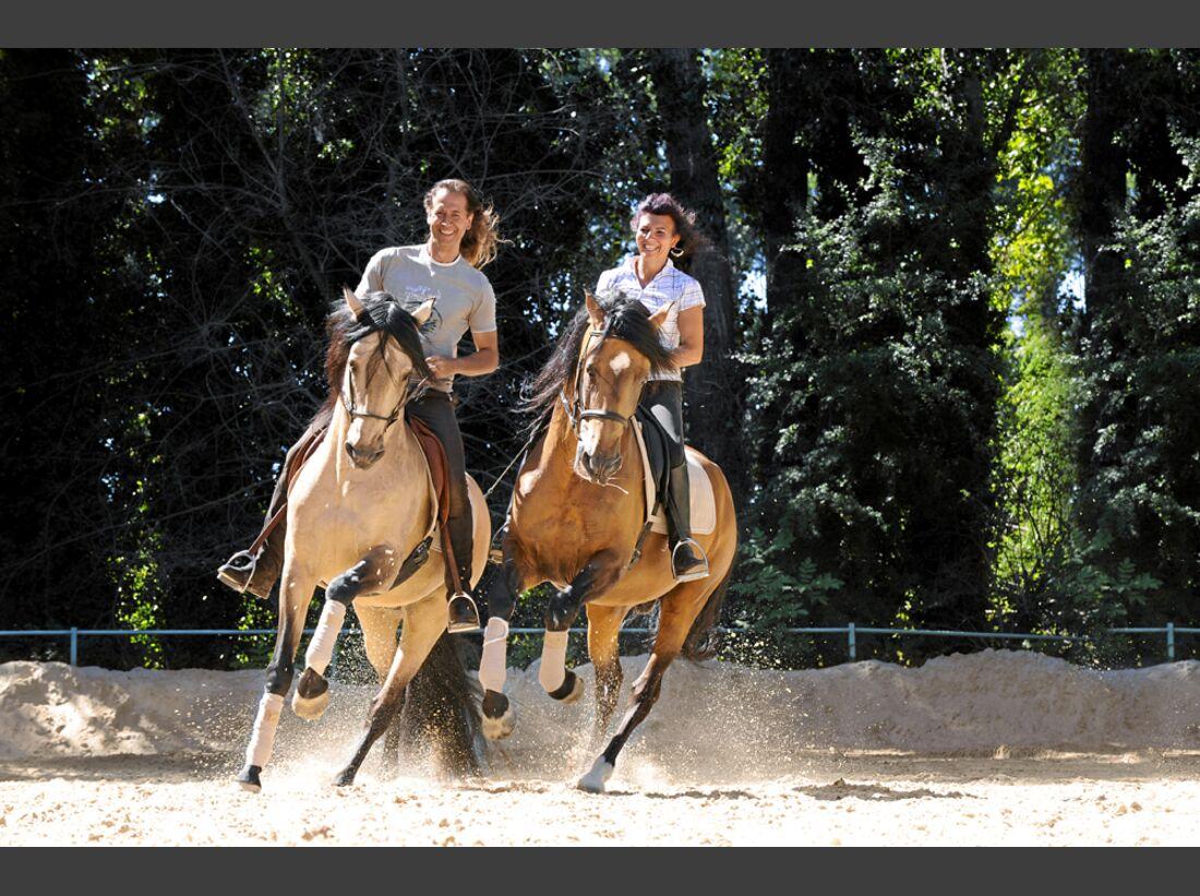 cav-pferde-fotografieren-2-aufmacher-lir5496 (jpg)