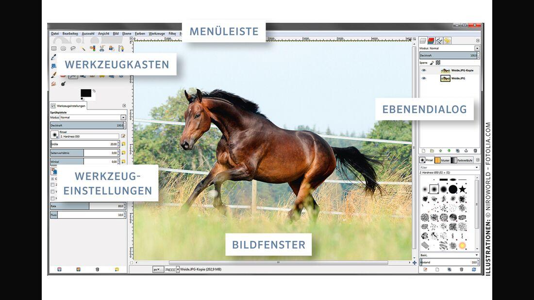 cav-pferde-fotografieren-3-gimp (jpg)