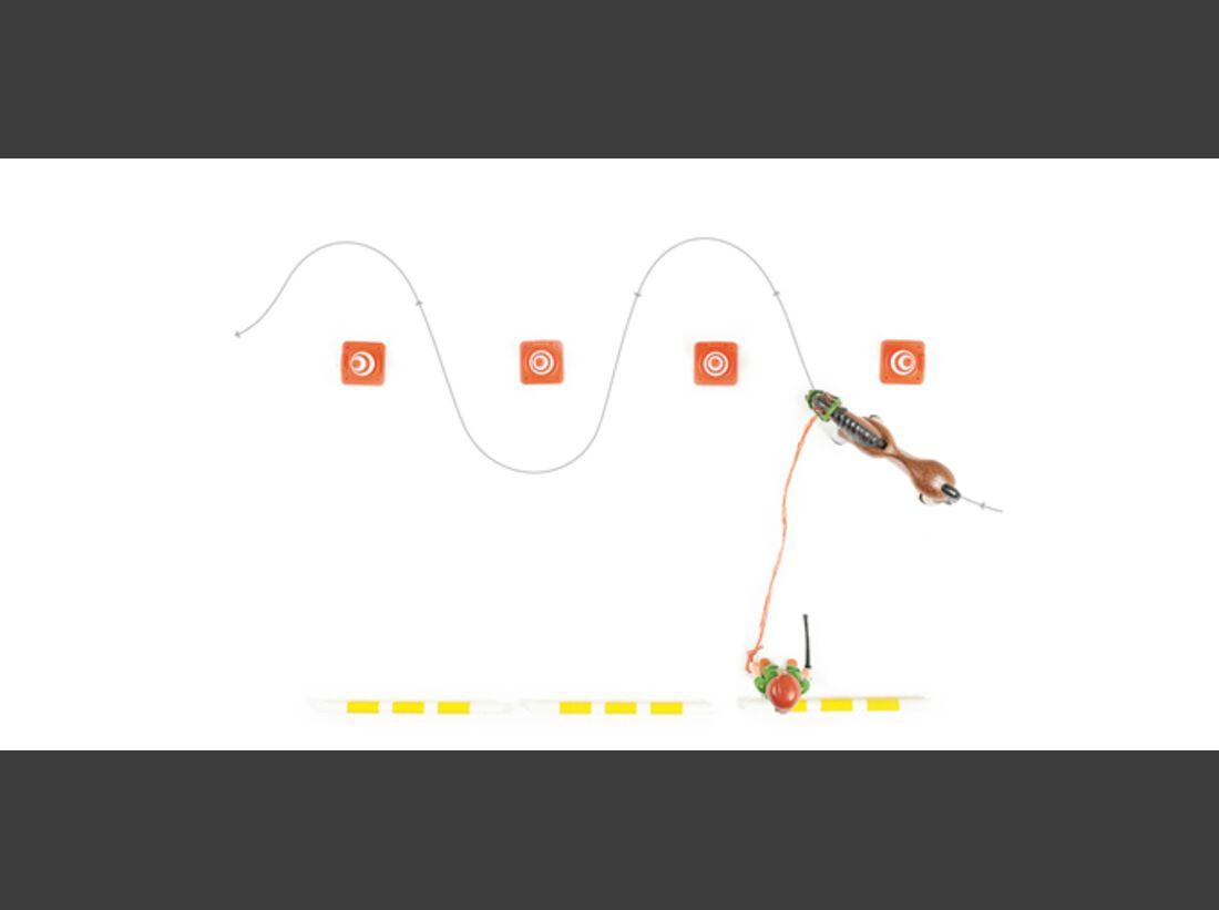 cav-stangen-pylonen-012017-der-freie-slalom-teaser-lir9671 (jpg)