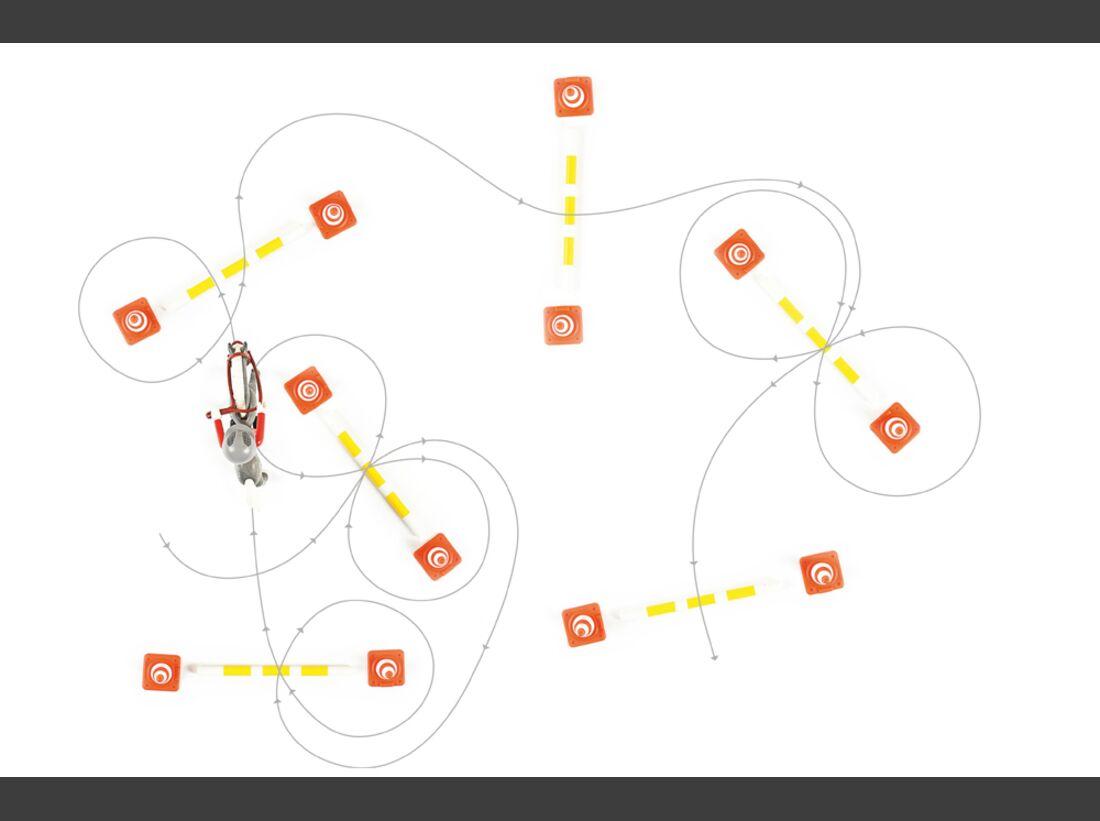 cav-stangen-pylonen-012017-die-verstreuten-tore-lir9704 (jpg)