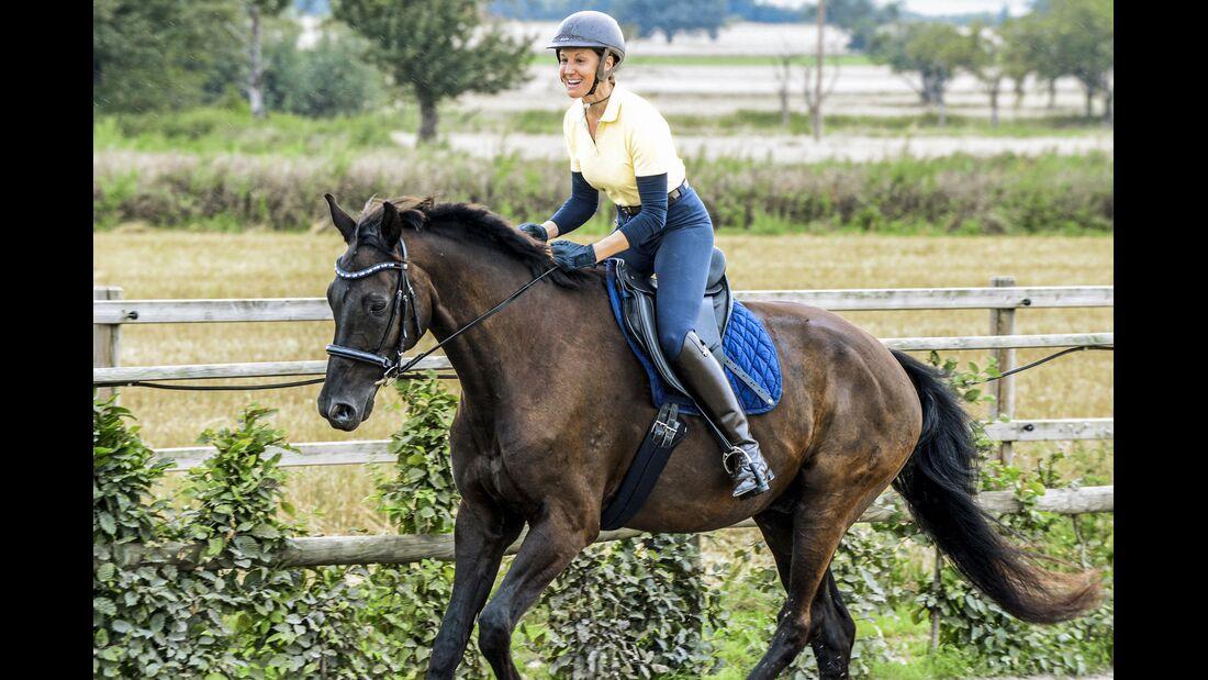 Als Reiter im Trab locker aussitzen - so gehts   cavallo.de